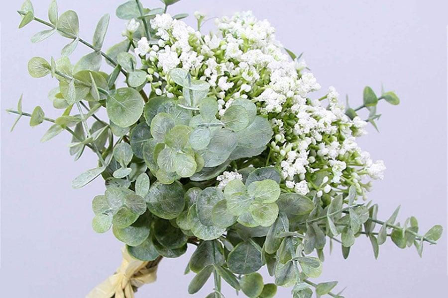 معرفی گل عروس (ژیپسوفیلیا)
