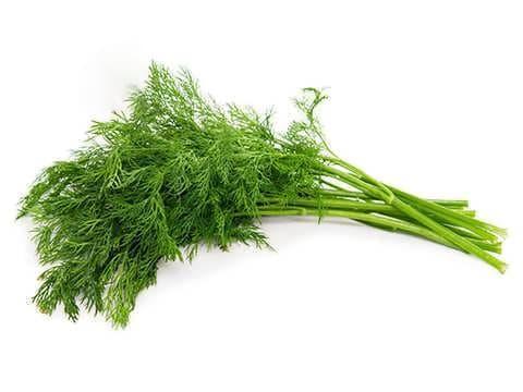 معرفی انواع سبزی ها
