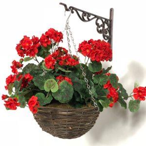 هر آنچه که باید مورد گل شمعدانی بدانیم