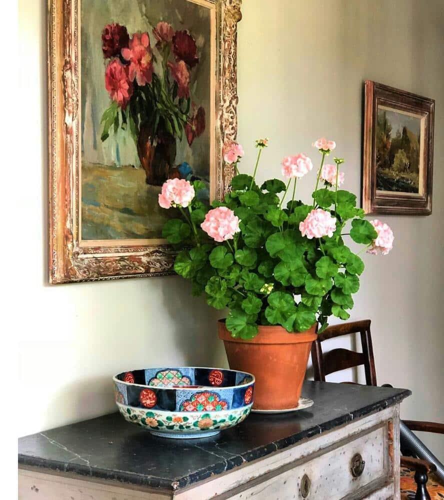 چگونه خانه خود را با گل و گیاه چیدمان کنیم؟!